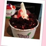 A mix of natural and pomegranate yogurt with fruit coulis and chocolate brownies